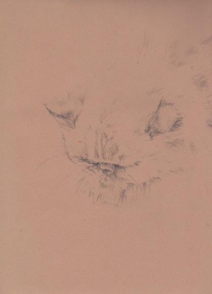 Percy, Feb '12